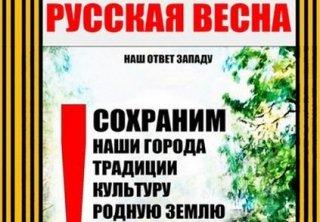 Русская весна. В поисках цели