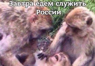 """""""Командир роты"""" """"ДНР"""" устроил стрельбу по подчиненным: двое ранены, двое сбежали, - ИС - Цензор.НЕТ 311"""